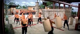 The 36th Chamber of Shaolin [5]