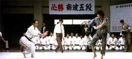 Karate Bull Fighter [1]