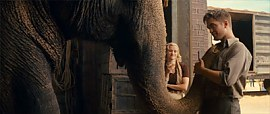 Water for Elephants [6]